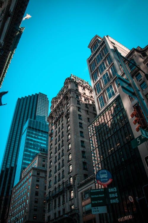 คลังภาพถ่ายฟรี ของ กระจก, ตึก, ถนน