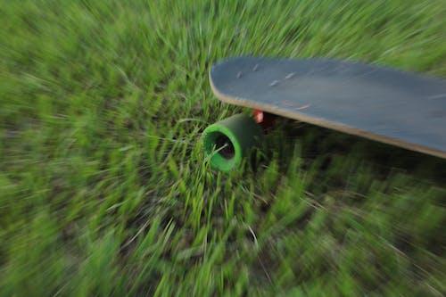 Free stock photo of dizzy, skate, skateboard