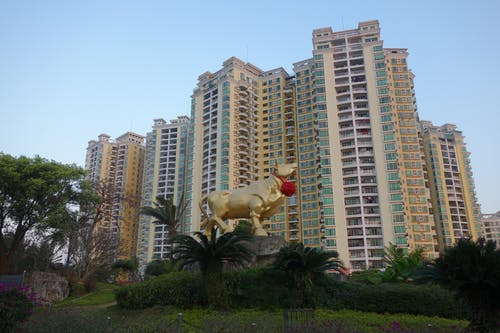 Free stock photo of apartment buildings, chinese new year, chinese zodiac