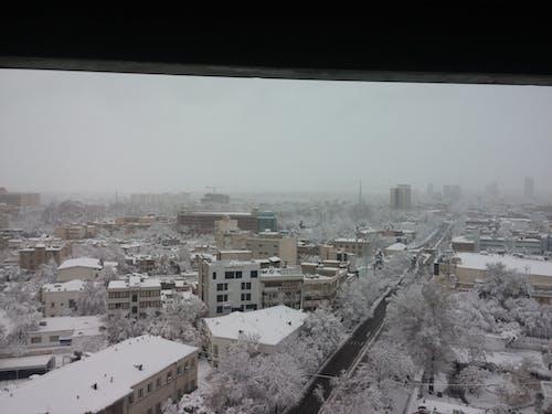 건물, 겨울의 무료 스톡 사진