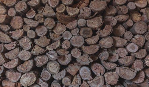 Fotos de stock gratuitas de apilar, de cerca, leña