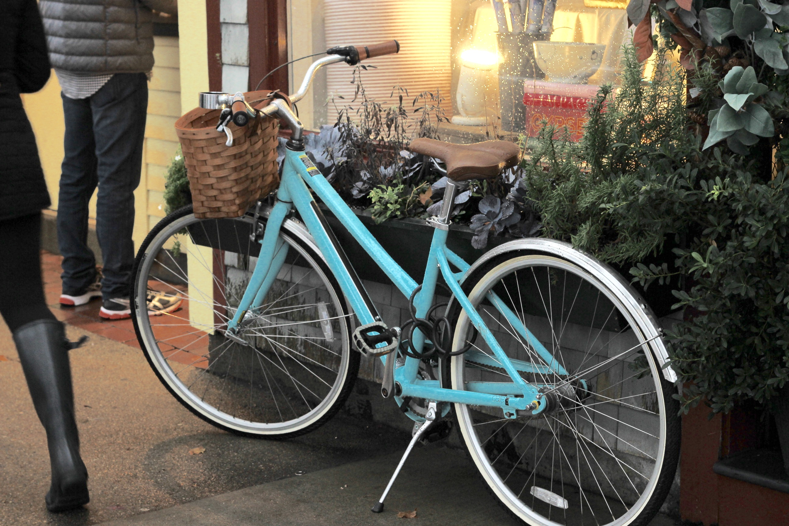 Kho ảnh miễn phí về hạt, xe đạp màu ngọc lam, xe đạp màu xanh