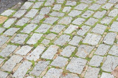 Free stock photo of brick paving, cobblestone, cobblestone street, cobblestones