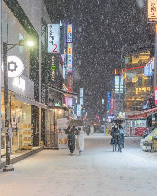 Immagine gratuita di corea, neve, nevicando