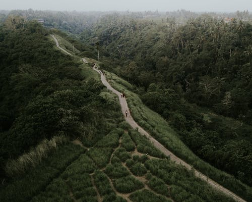 Drone view of winding roadway going through abundant grassy terrain surrounded by trees located in highlands
