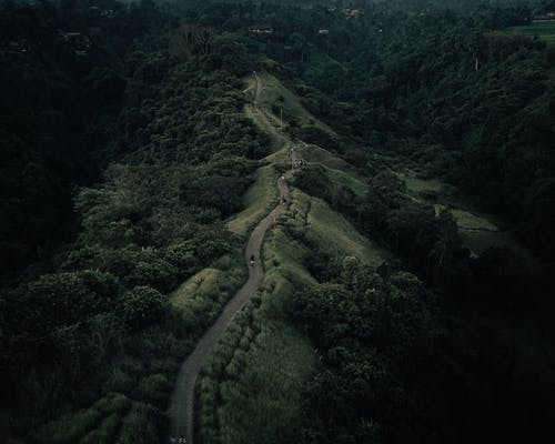 Mountainous road on green hilly terrain