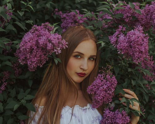Portrait of peaceful young female with long straight hair wearing white dress touching blossoming flowers of lilac bush and looking at camera