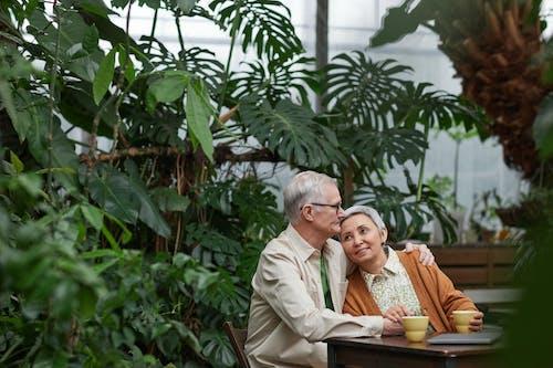 Fotos de stock gratuitas de adulto, afecto, amantes