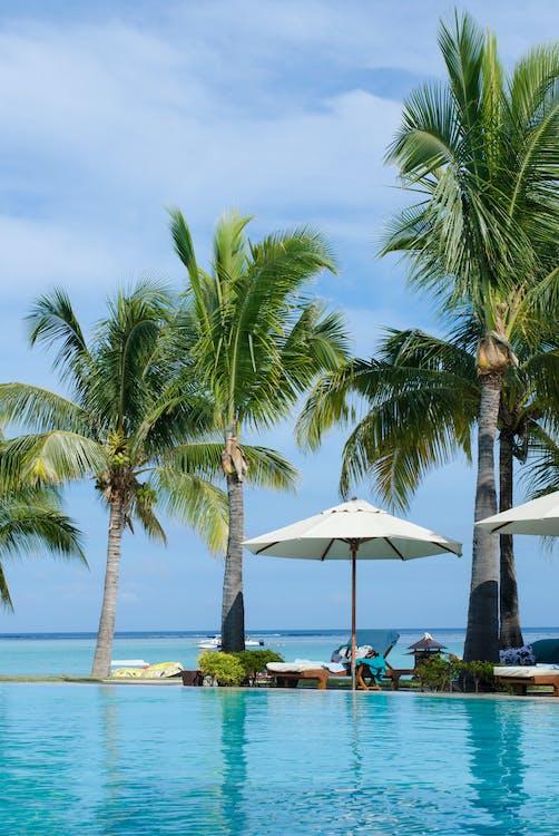 Kostenloses Stock Foto zu afrika, badeort, blaue himmel