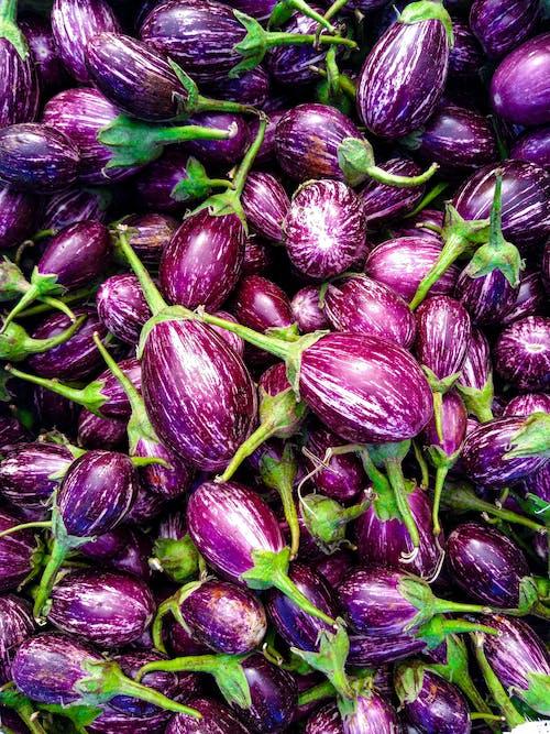 Fresh ripe eggplants of small size