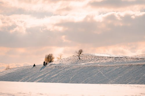 Distant anonymous people in warm clothes with sledge strolling on snowy hilly terrain on clear sunny winter day in nature
