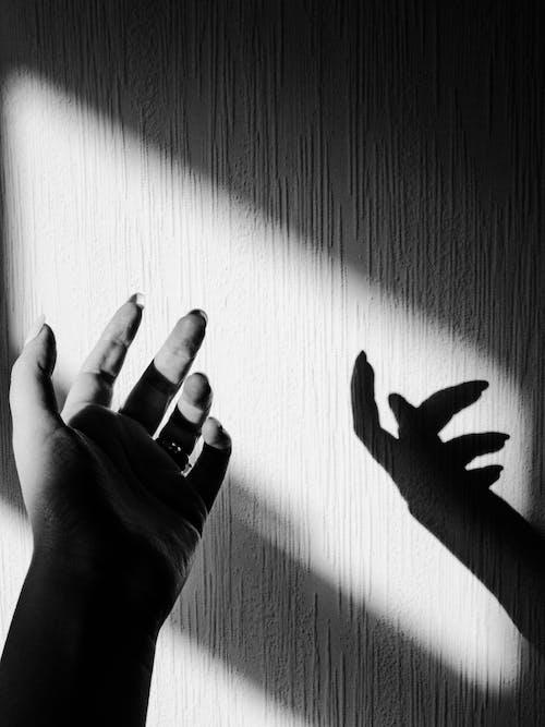 Free stock photo of black and white, body, dark