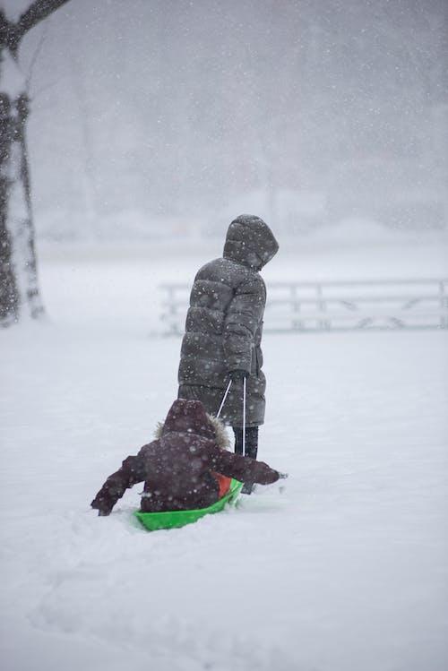Imagine de stoc gratuită din sanie, săniuș, zăpadă