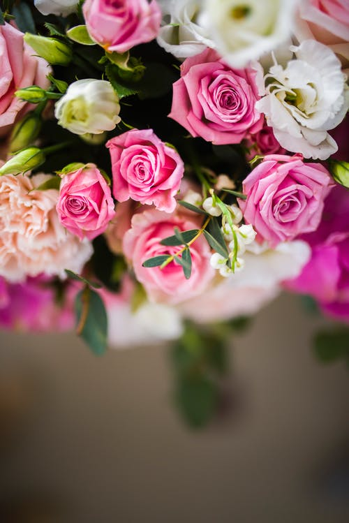 From above of bouquet of fresh roses and carnations with buds and green leaves on blurred background