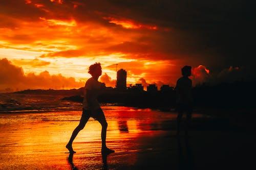 Free stock photo of beach sunset, best friends, golden hour