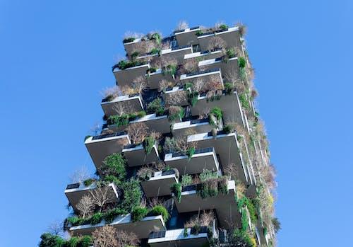 Free stock photo of architectural design, architecture design, art