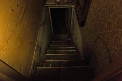 Free stock photo of creepy, dark, dim