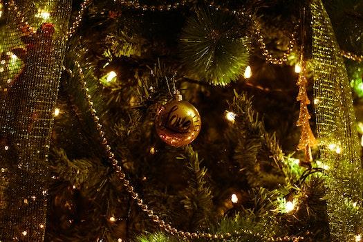 Shallow Photography of Christmas Decor