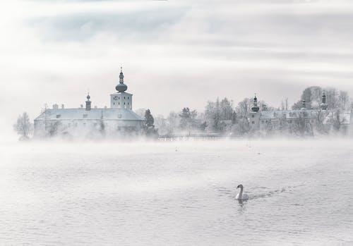 Безкоштовне стокове фото на тему «імла, будівлі, вода, дерева»