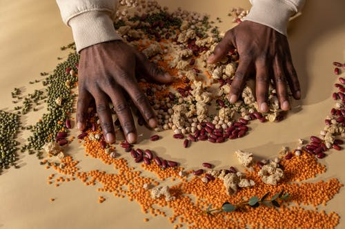 Person Holding Brown and Red Seeds