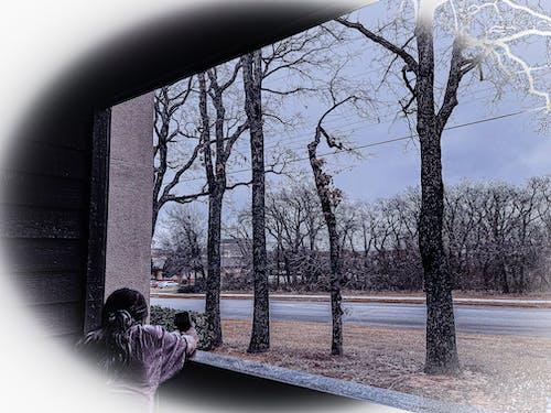 Ingyenes stockfotó ablak, fénykép, fényképész témában