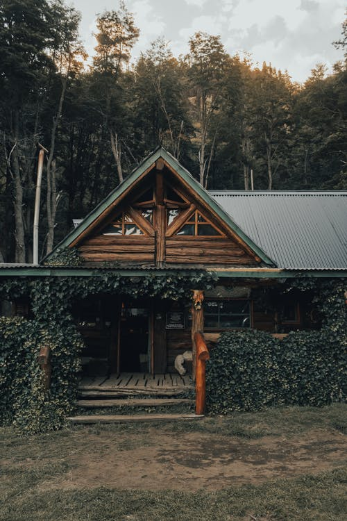 Exterior of residential wooden house with terrace covered with green trees placed in forest in countryside in daytime