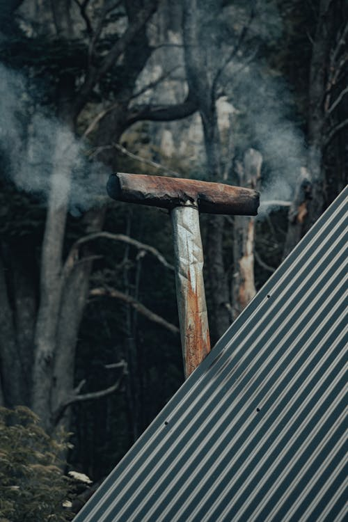 Metal roof of house and chimney placed among green trees in forest in countryside in daytime
