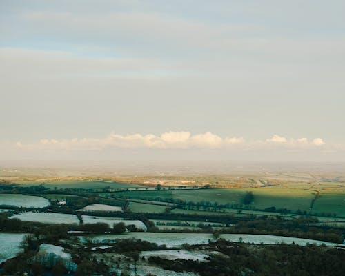 Kostnadsfri bild av åkermark, dimma, fält