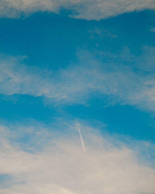 Kostnadsfri bild av atmosfär, dunig, ekologi