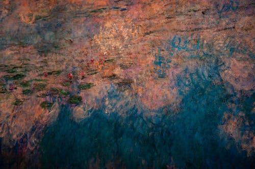 คลังภาพถ่ายฟรี ของ การทาสี, จิตรกรรม, ดอกบัว