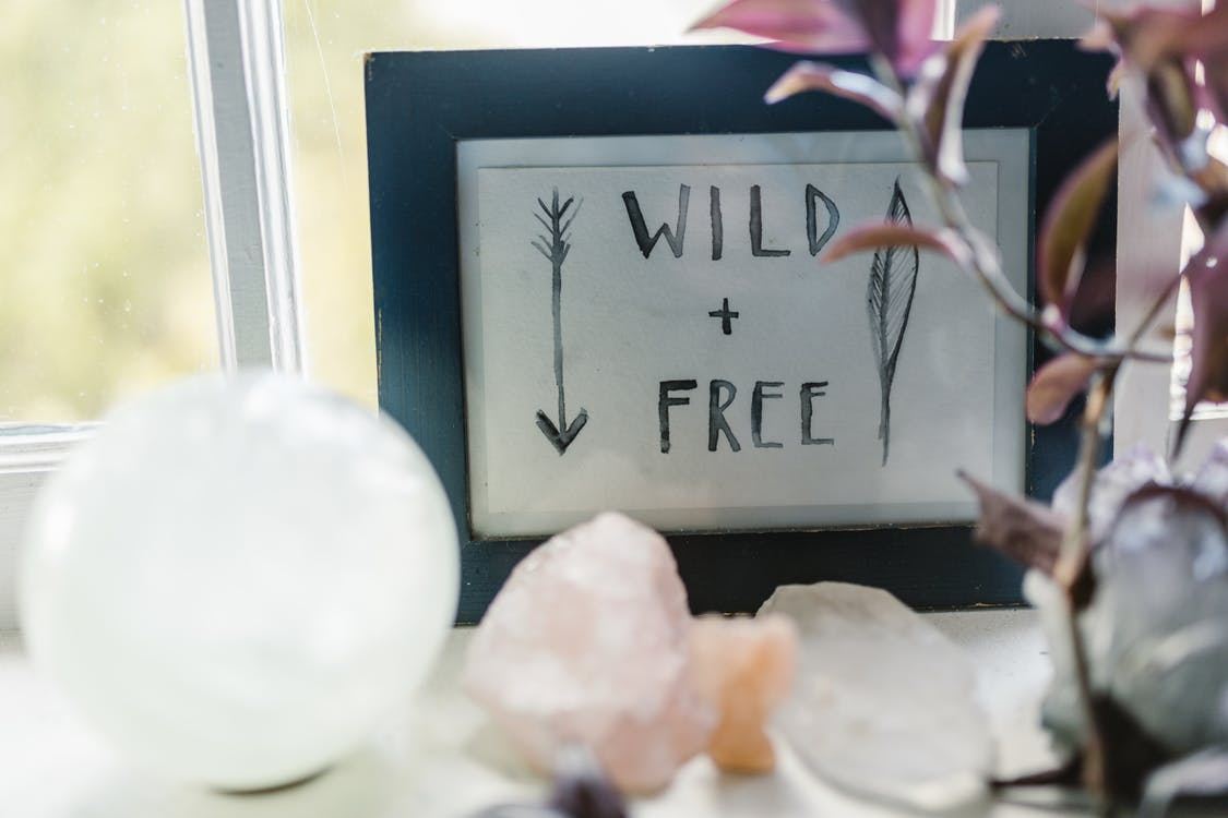 Photos gratuites de à l'intérieur, aliments, amour