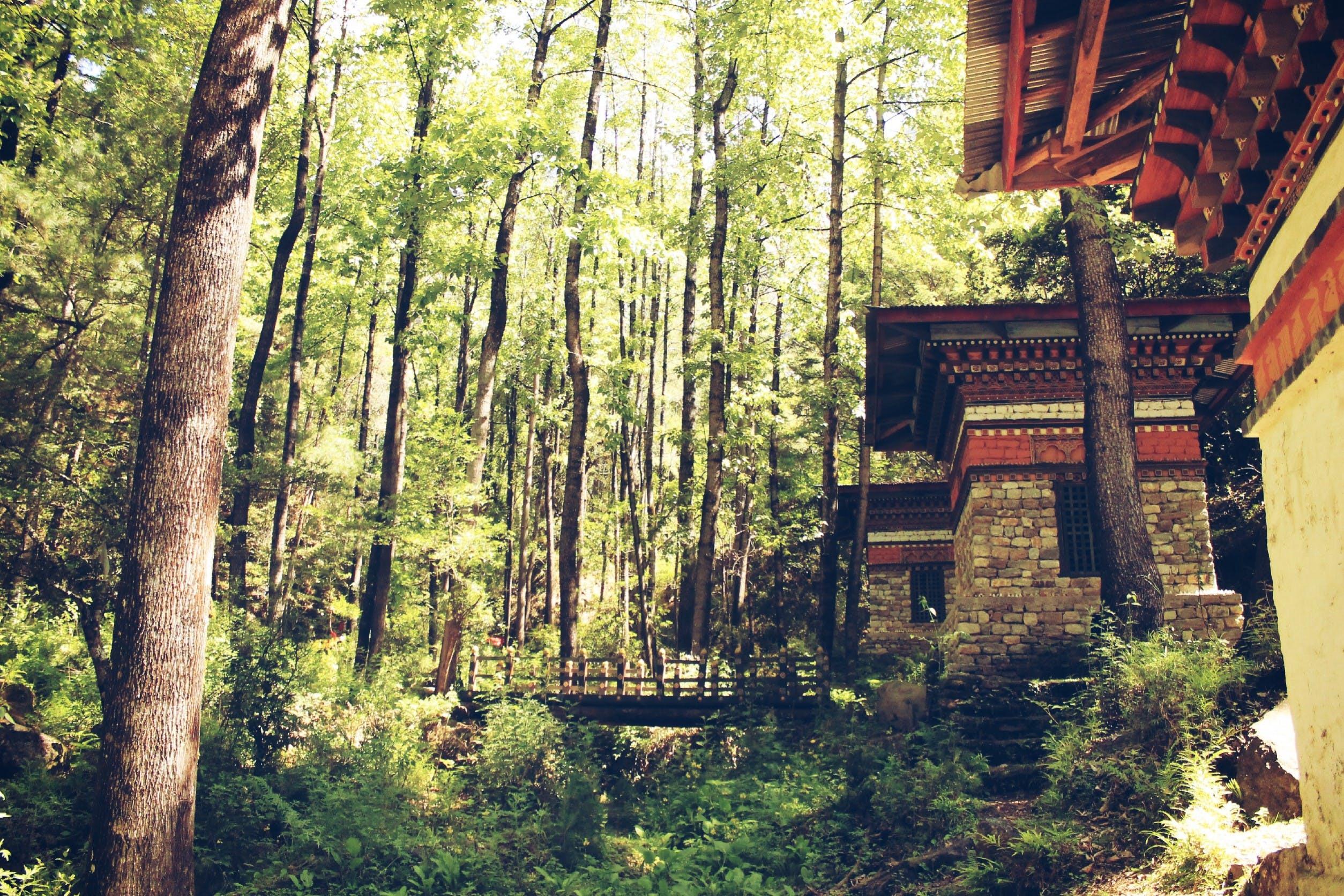 Kostenloses Stock Foto zu landschaft, häuser, felsen, wald