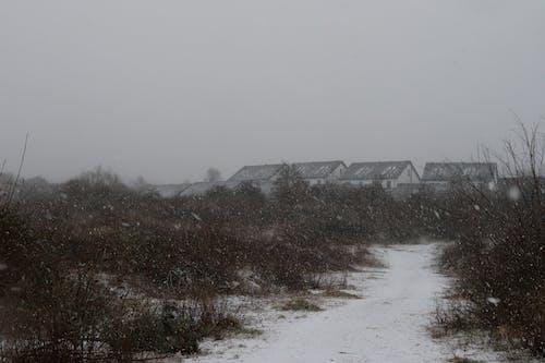 下雪, 村莊, 村落 的 免費圖庫相片