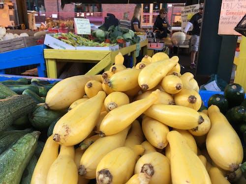 Free stock photo of farm produce, squash
