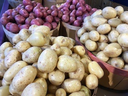 Free stock photo of potatoes