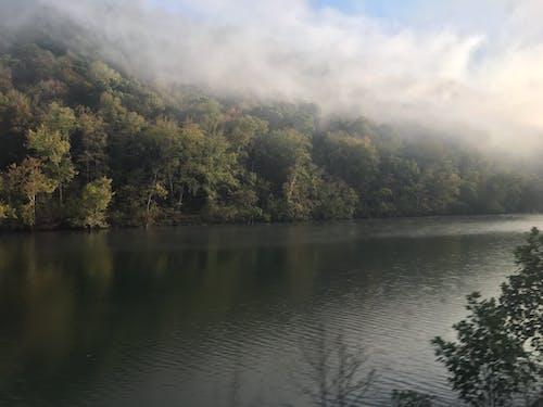 Free stock photo of fog