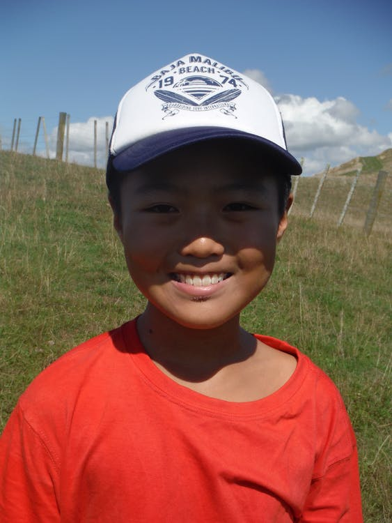 Free stock photo of boy, farm, green field