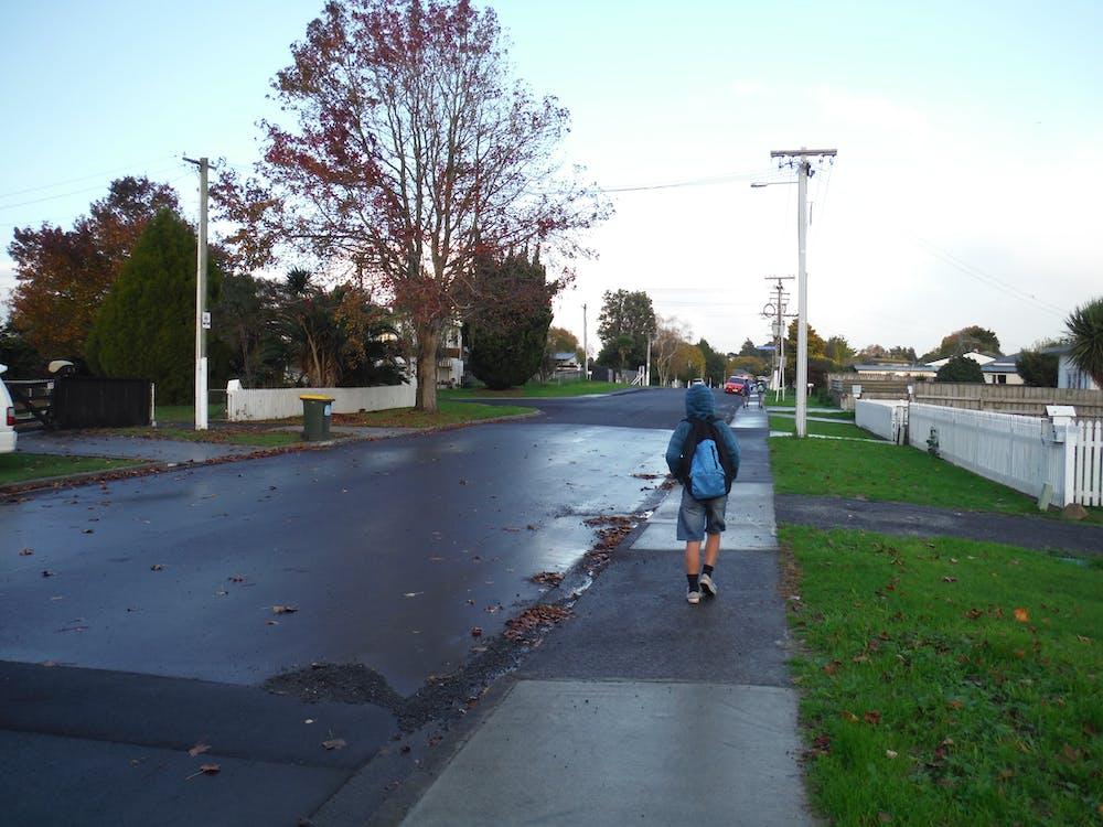 Free stock photo of paved walkway