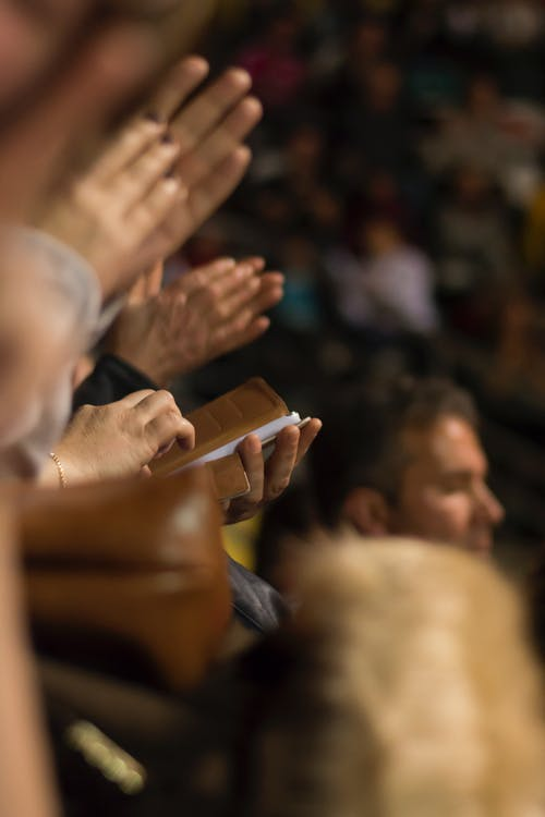 Free stock photo of applaud, applause, concert, distraction