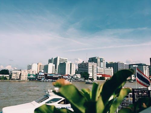 Foto profissional grátis de água, arquitetura, beira-mar, centro da cidade