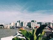 Metropolis Near the Ocean