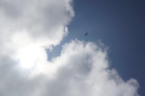 Безкоштовне стокове фото на тему «блакитне небо, Денне світло, збираються хмари, матір-природа»