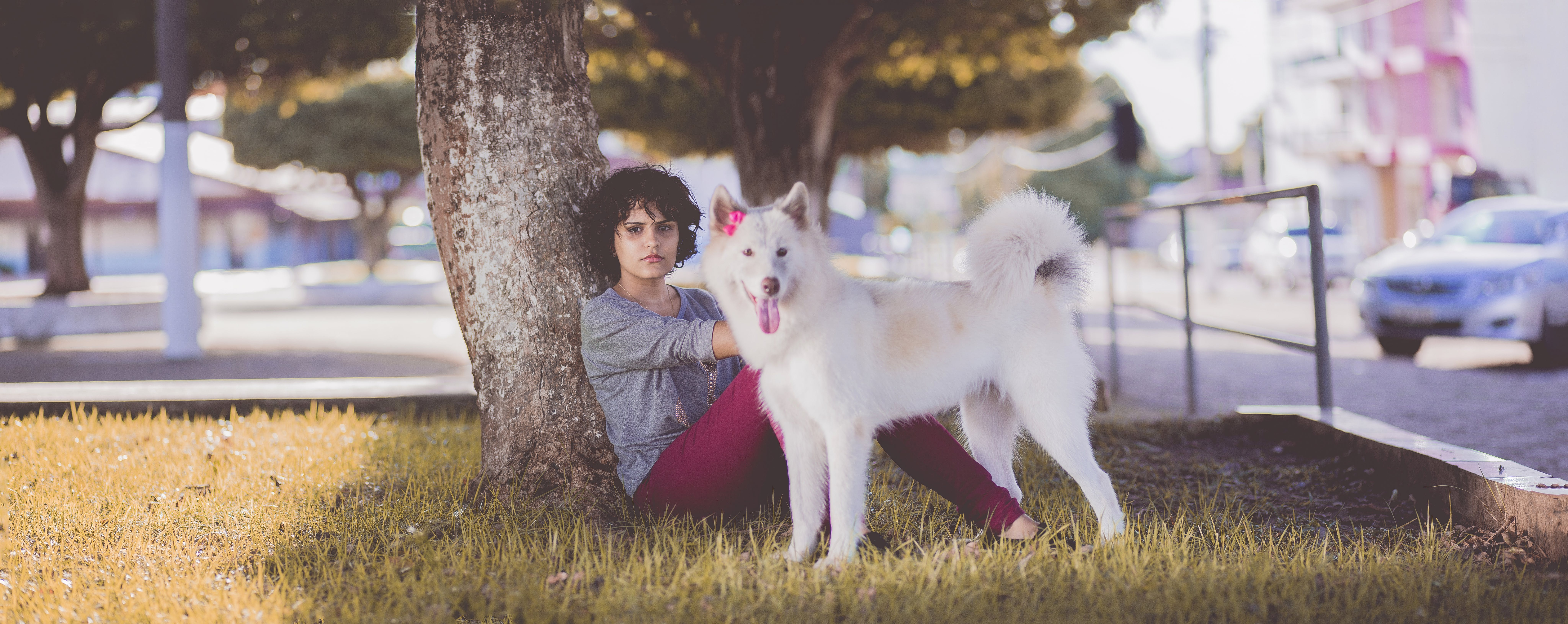 Woman in Gray Long Sleeve Top and Red Pants Sitting Beside Tree and White Medium Coated Dog