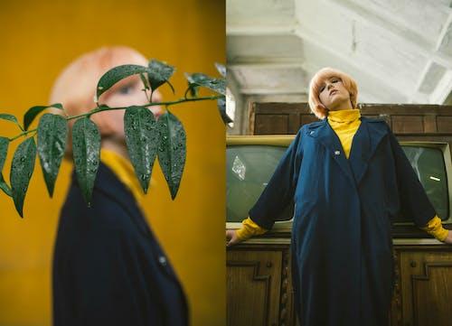 Безкоштовне стокове фото на тему «біляве волосся, великий план, вираз обличчя, волога»