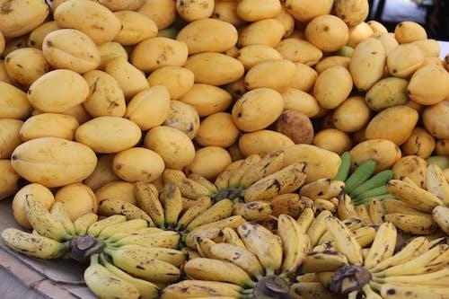 Free stock photo of Fruit all the season