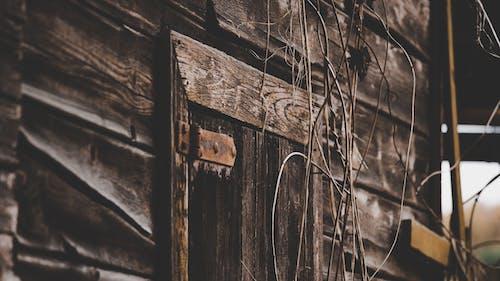 Photos gratuites de abandonné, bois, déclin, en bois