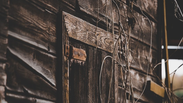 Close Up Photo of Gray Wooden Door