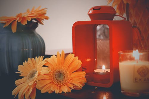 Free stock photo of beautiful flowers, candle, floor lamp
