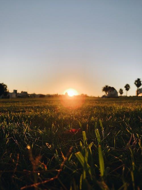 Free stock photo of Atardecer, Beautiful sunset, cielo