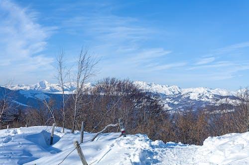 Free stock photo of climbing, giant mountains, mountain